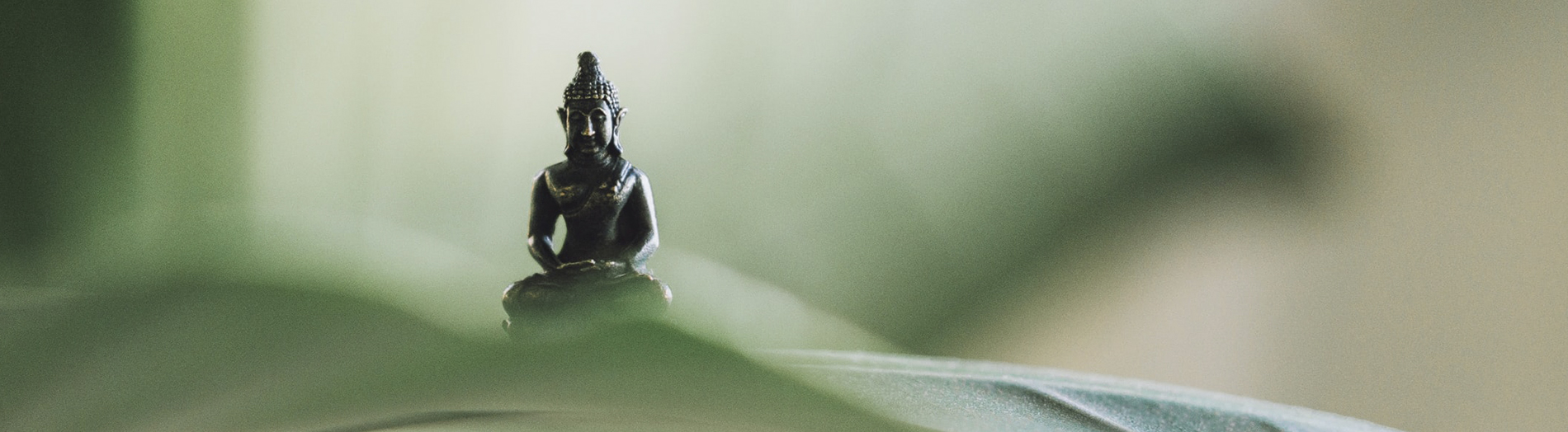 biid business yoga in graz